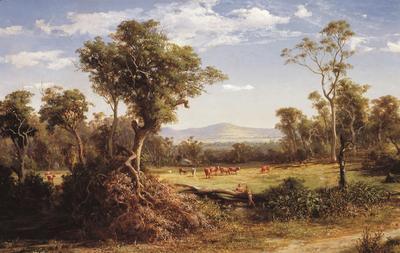 Gisborne Hill from the Slopes of Mount Macedon